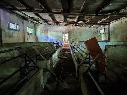 Interior de la cochiquera, que se levanta sobre la fosa de los asesinados por el ejército franquista.