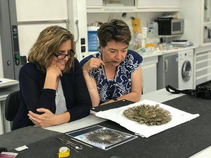 Las doctoras Filloy y Moreno en el atelier de restauración del Museo del Quai Branly, en 2018.