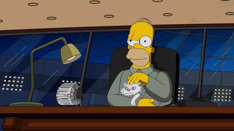 Homer J. Simpson es, 'a priori', el ejemplo de lo que no hay que hacer.