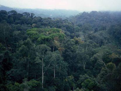 Parte de la sierra de Mayombe, que se extiende por República Democrática del Congo, Gabón y Angola.