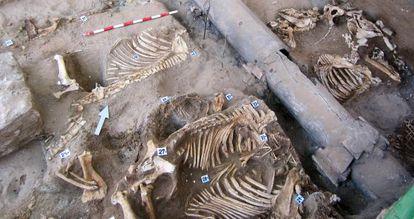 El yacimiento en el que aparecieron los restos óseos de animales para hacer botones.