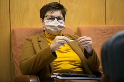Encarnación Burgueño, directora de la Operación Bicho, durante su comparecencia el 4 de diciembre ante la Comisión de Investigación de la Asamblea de Madrid.