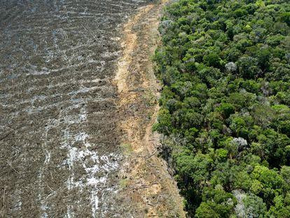 Imagen aérea  de una zona deforestada en la región de Sinop, en Mato Grosso, en agosto pasado.