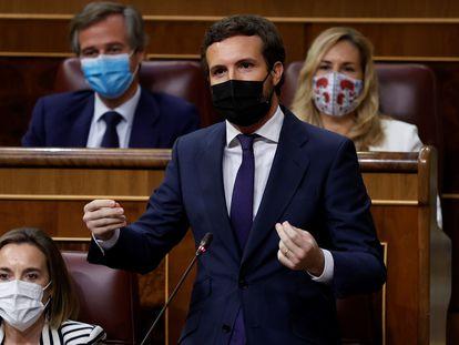 El líder del PP, Pablo Casado, interviene durante la sesión de control del Congreso celebrada este miércoles.