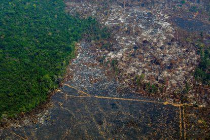 Una zona de la Amazonia deforestada en una vista aérea tomada en agosto pasado en la reserva biológica de Altamira. JOAO LAET AFP