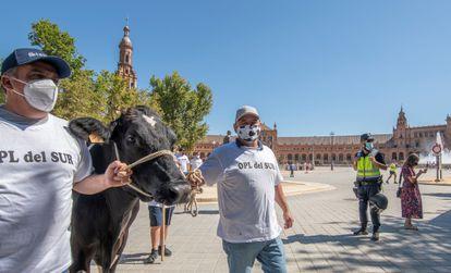 Protestas de ganaderos en Sevilla el pasado 13 de julio por los bajos precios de la leche.