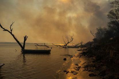 El fuego avanza sobre el cauce del río en el delta del Paraná. Según Greenpeace, se registraron3.712 focos entre enero y mediados de mayo, la temporada del año en la que suelen registrarse menos incendios.
