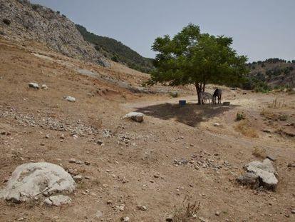 Lugar donde se encuentran los restos de Federico GarcÍa Lorca, según los estudios de Miguel Caballero y Javier Navarro.