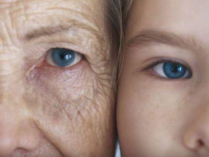 La investigación en longevidad alumbró un gran mercado de cremas y complementos nutricionales.