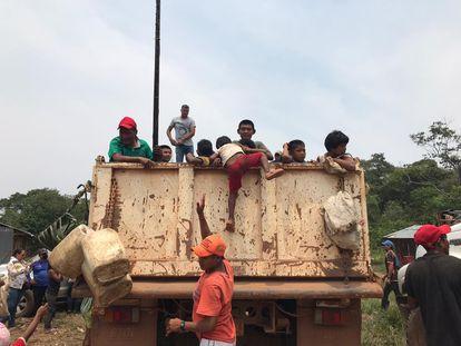 Indígenas del pueblo nukak se adentran en la selva por temor a la COVID-19