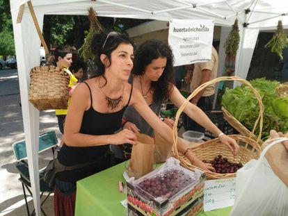Mercado de agricultores ecológicos en Madrid.