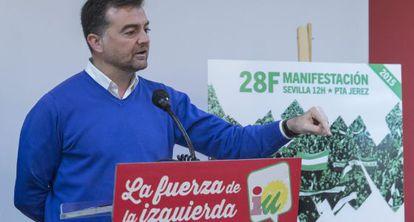 El coordinador general de IU, Antonio Maíllo, en Sevilla.