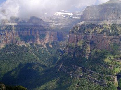 Los bosques del Pirineo, como los de pino negro de Ordesa y Monte Perdido (en la imagen) están entre los que se están expandiendo.