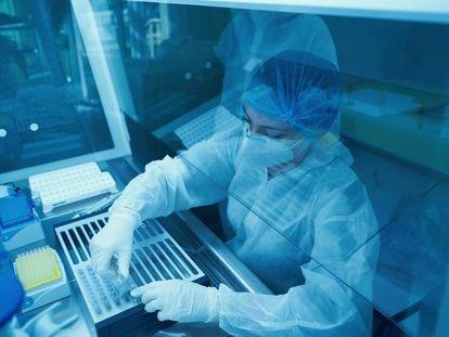 Científicos trabajan para en un laboratorio para detectar el virus de la covid.