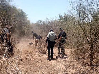 Peritos de la Fiscalía de Justicia de Sonora localizan el cuerpo semienterrado del líder yaqui Tomás Rojo, el pasado 17 de junio.