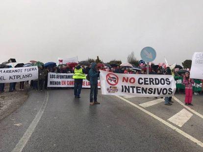 Manifestantes cortan la A-315 a la altura de Cuevas del Campo (Granada) al grito de El negocio del marrano mata al altiplano