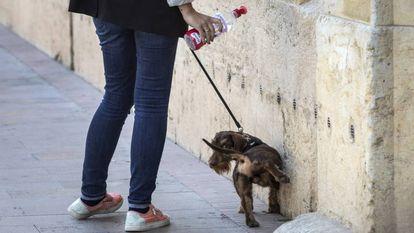 Una propietaria usa una botella de agua para limpiar el pis de su mascota en una calle de Valencia.