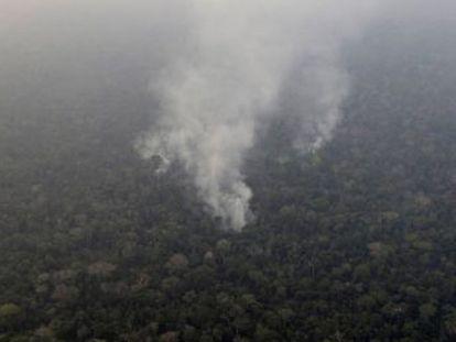 Irlanda también advierte de que tomará la misma medida si no se protege a la Amazonia del fuego