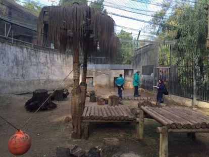 Personal del zoológico de Chile supervisan e lugar del incidente.