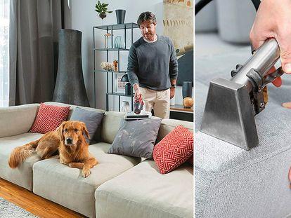Limpia, desinfecta y elimina los malos olores de tu sofá con estos productos.