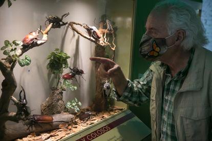 Pedro Velasco, fundador de InsectPark, durante una visita guiada.