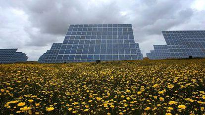Una planta solar de Acciona en Portugal.