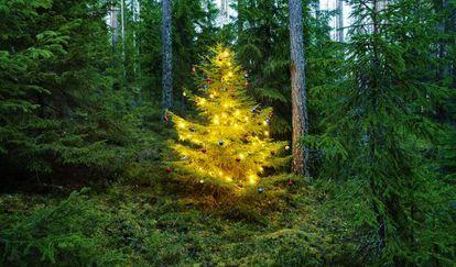 Pino decorado en Heionla (Finlandia).