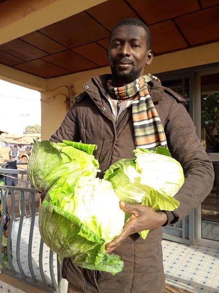 Ousmane Diallo, en su granja en Mandiana durante la cosecha de lechugas