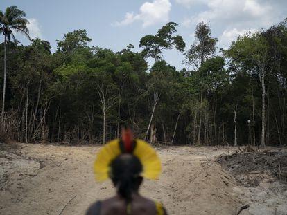 Un indígena kayapó, en una senda abierta por madereros ilegales en Altamira (Pará), en 2019.