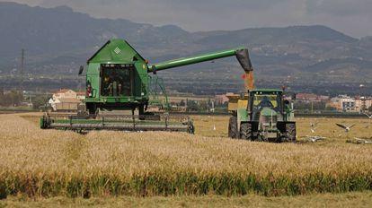Maquinaria agrícola en el delta del Ebro.