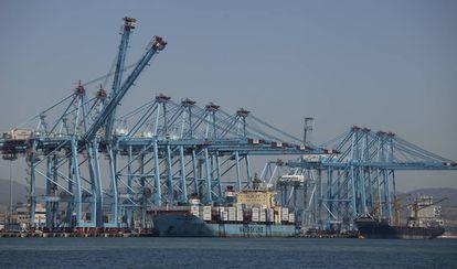 Terminales de contenedores del Puerto de Algeciras.