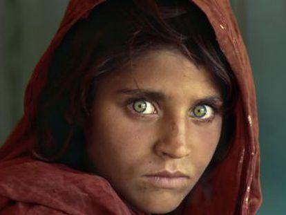 El periódico  The New York Times  revela manipulación en el trabajo de Steve McCurry