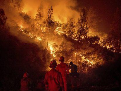 Bomberos frente al incendio múltiple de Mendocino, en Ladoga, California, el pasado martes.