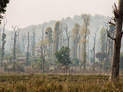Asentamiento humano en el parque nacional Chitwan, Nepal.