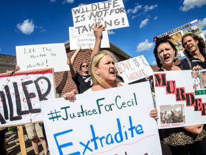 Manifestantes claman contra Palmer ante su clínica dental en Minnesota