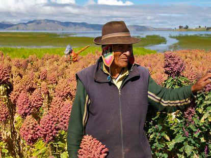 Retrato de un granjero de quinoa.