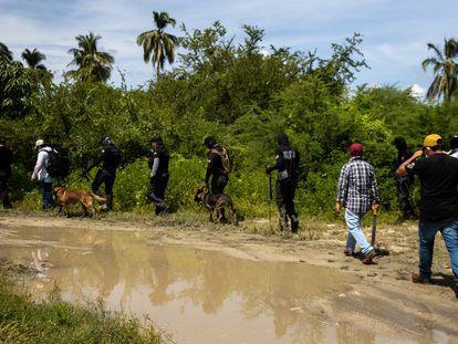 El equipo de búsqueda sigue el rastro del desaparecido Vicente Suástegui en el poblado de El Arenal (Guerrero).