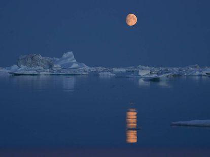 Imagen tomada durante una expedición de Greenpeace en el Ártico.