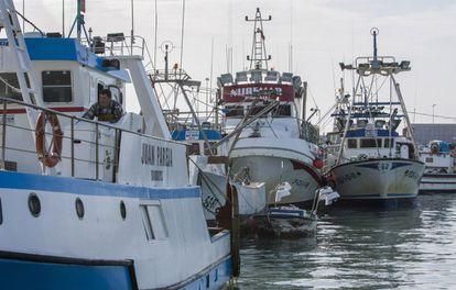 Barcos de pesca amarrados en el puerto de Barbate (Cádiz).