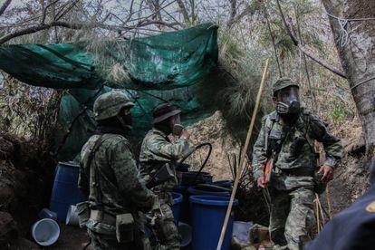 Elementos del ejercito mexicano trabajan desmantelando un narco laboratorio de drogas químicas en los limites de la sierra de Nayarit y Sinaloa.