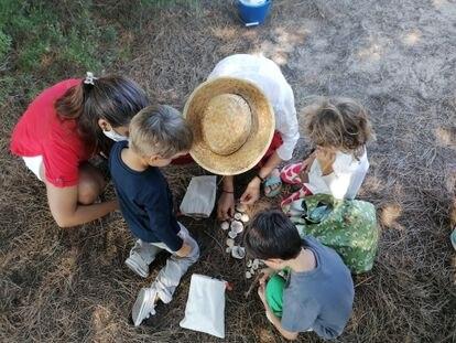Varios alumnos de la escuela playa Tierra y Sal cuentan conchas con sus acompañantes en Sancti Petri, Cádiz.