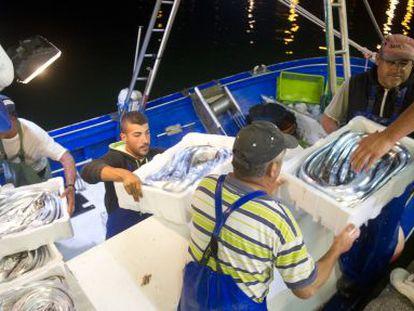 Marineros de Barbate descargan tras faenar en Marruecos.