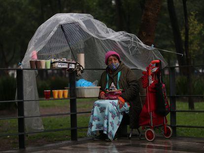 Una mujer ofrece sus productos por las calles de Ciudad de México.