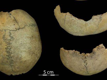 Cráneo tallado a modo de copa que antes había sido hervido y desollado.