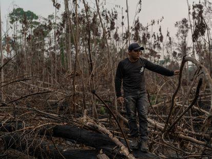 Eric Karipuna, de 24 años, observa una zona devastada dentro de la tierra indígena karipuna, en Porto Velho.