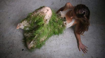 Image of 'Plantoceno' by the artist Paula Bruna.