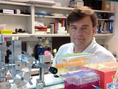 El investigador Santiago Canals