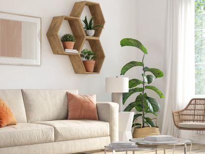 Las plantas artificiales también pueden ser bonitas y crear un ambiente acogedor en casa o en la oficina.