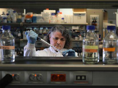 Pilar Martín, investigadora del CNIC, manipula una muestra en su laboratorio.