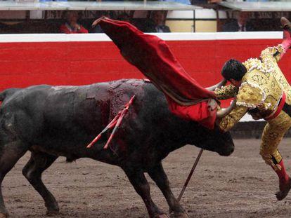 El tercer toro volteó a Emilio de Justo y le desgarró la oreja izquierda.